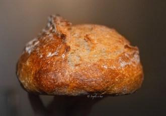 Simplu si bun - Sauerteig Mischbrot sau paine bio cu maia si faina de secara 30%