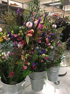 bloomon workshop