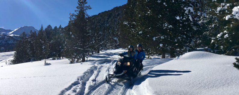 Team on snowmobiles