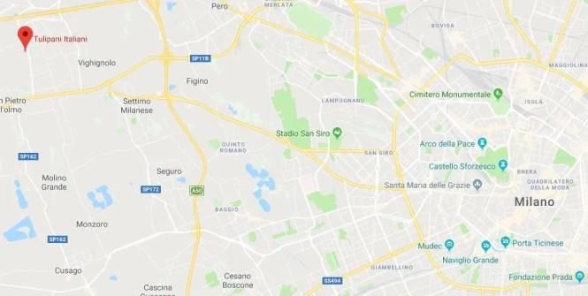 mappa tulipani italiani