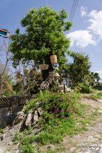 wpid615-Zypern-018.jpg