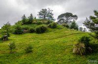 wpid1334-Neuseeland-014.jpg