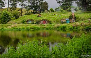 wpid1340-Neuseeland-017.jpg