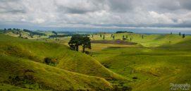 wpid1342-Neuseeland-018.jpg