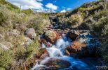 wpid1357-Neuseeland-025.jpg