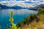 wpid1427-Neuseeland-060.jpg