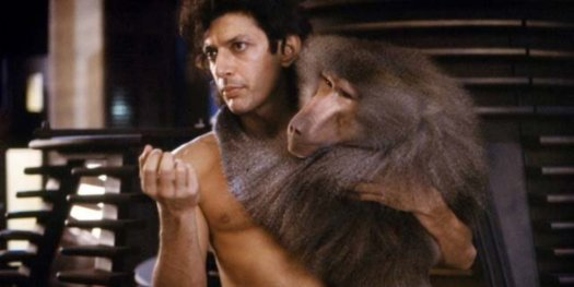 Jeff Goldblum being a babe in The Fly.