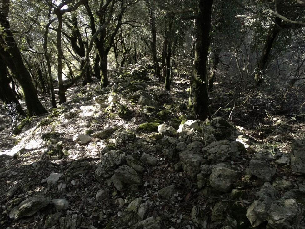 cerchio-di-pietre-06