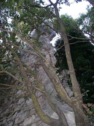 torre-di-masseo-09