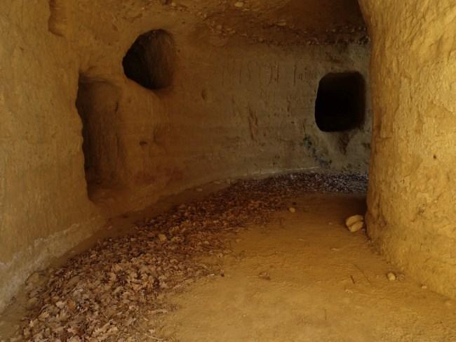 labirinto-etrusco-01