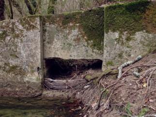 torrente-dei-mulini-19