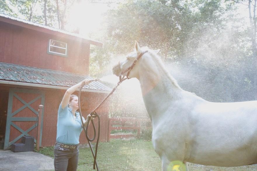 Kathy Duffy Charming washing off sunflare