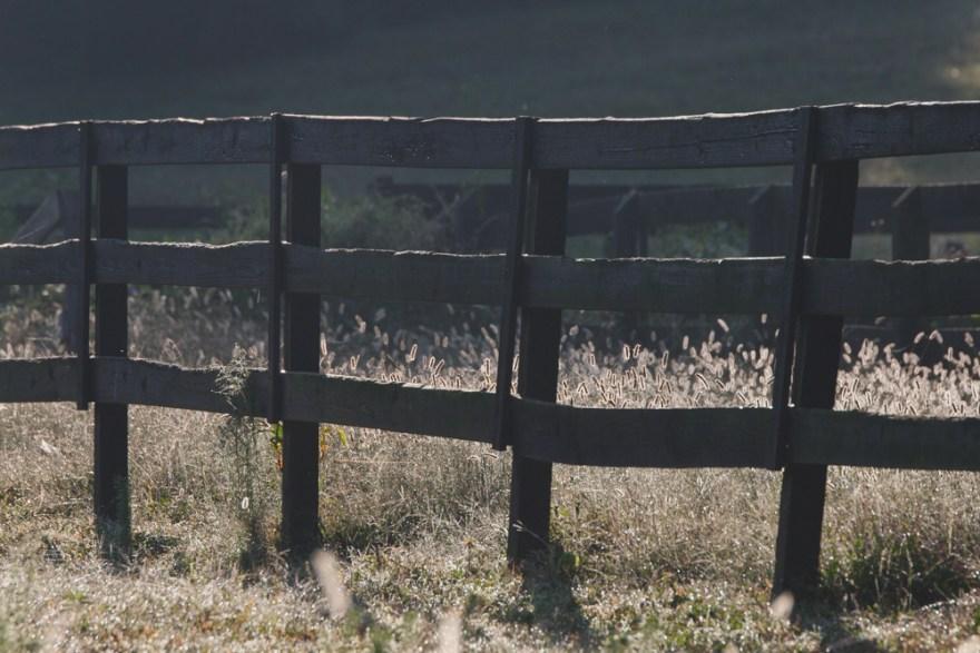 Horse fence on Kathy Duffy's farm in Milton Georgia.