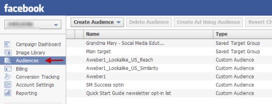 Custom Audiences Power Editor