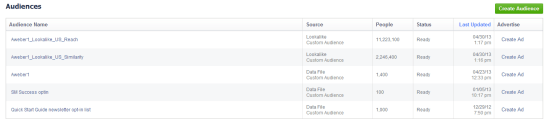 List of Custom Audiences