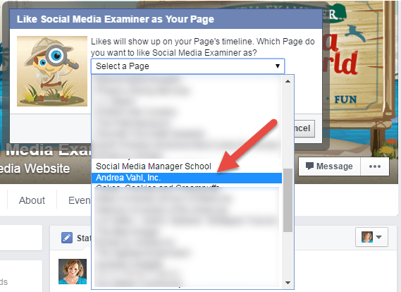 Like another Page as your Page dropdown