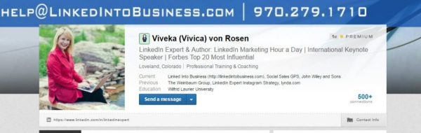 viveka von rosen linkedin