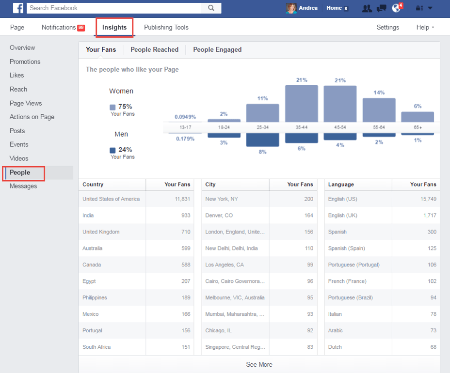 Facebook Ads Demographic Insights