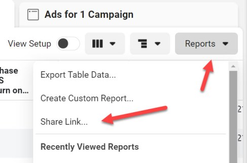 Send Facebook Ads report to client