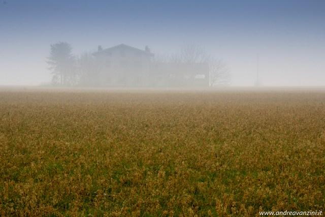 ...a foggy day...