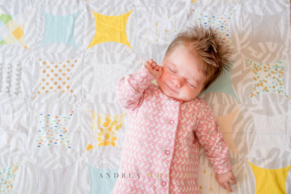 Newborn family photo session in Dulwich