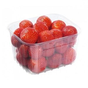 fraise-belge