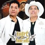 Dupla Sertaneja André e Andrade Viola Romântica músicas - Andre Andrade Viola Romantica Frente 2 150x150 - Músicas