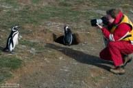 Катя и позирующий пингвин.