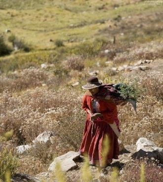 Жительница долины Colca.