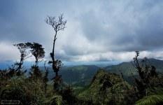 Восточная сторона острова с высоты горной тропы El Yunque Peak trail.