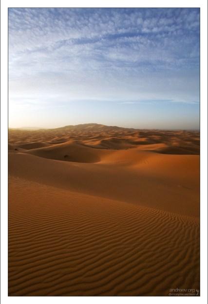 Бескрайние просторы пустыни.