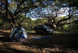 Кемпинг в национальном парке Santa Rosa.