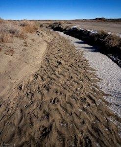Пересохшее русло небольшого ручья.