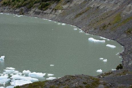Небольшая бухта около языка ледника Grey.