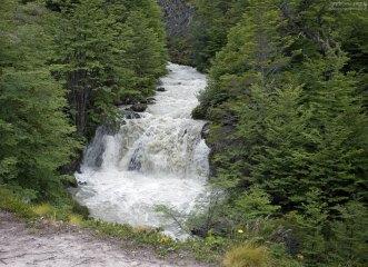 Пороги на одной из рек, впадающей в озеро Grey.