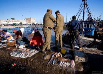 Торговля морепродуктами на пирсе.