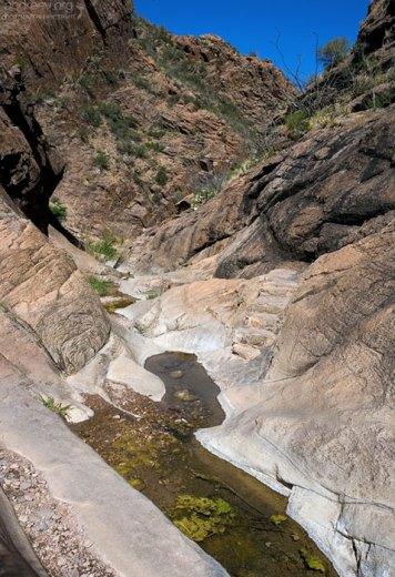 Тропа Window Trail через каньон.