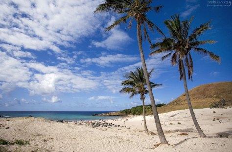 Белоснежный песок на пляже Anakena beach.