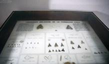 Зубы древних акул. Музей в Sacaco.