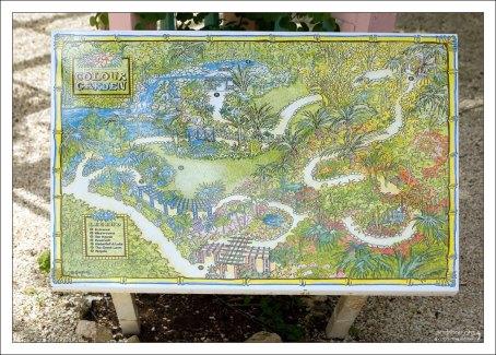 Карта ботанического сада.