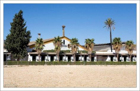 Конюшни в Королевской Андалузской школе верховой езды.