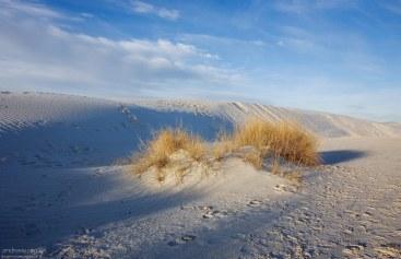 Обычный гипс (CaSO4•2H2O) в виде песка.
