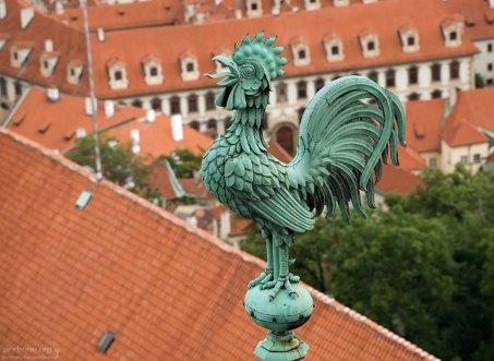 Бронзовый петушок на крыше собора Св. Вита.