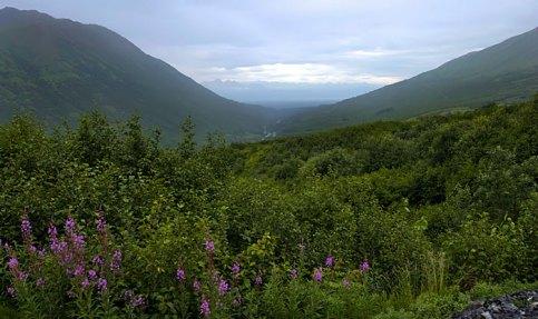 Перевал Hatcher Pass в горах Talkeetna Mountains.