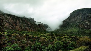 Заползающий в долину Chisos Basin утренний туман.