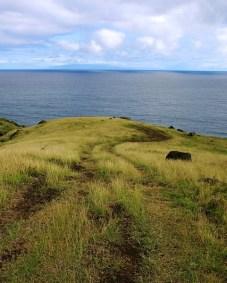 Южные склоны вулкана Халеакала, уходящие прямо в океан.