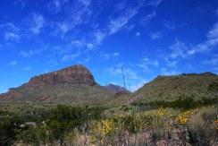 На пути к Сосновому каньону.
