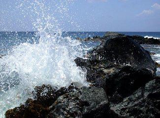 Каменный пляж Kapa'a - отличное место увидеть огромные стаи рыб-дудочек.