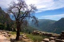 Склоны Парнаса и руины древних Дельф.