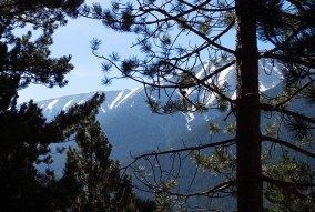 Снег на вершинах Олимпа.